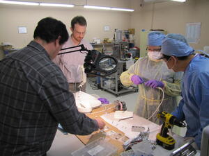 CAPTION: © Fraunhofer USA ## Fraunhofer USA CMI engineers and Boston University surgeons collaborating.